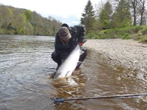 Salmon Fishing Scotland969434_451578988269297_723570581_n