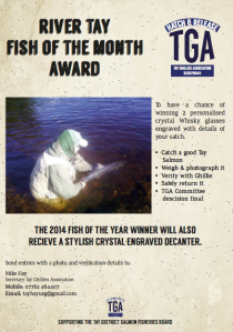 Tay Ghillies Association - River Tay Fish of The Month Award