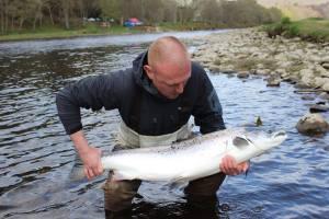 Newtyle salmon
